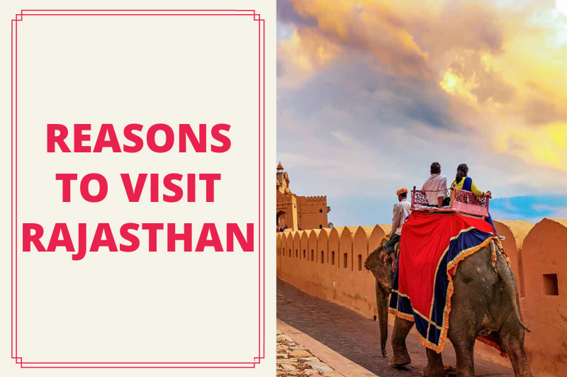Reasons To Visit Rajasthan